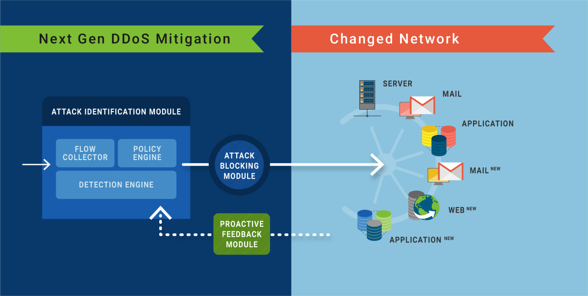 ddos-mitigation-changed-network